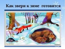 звери готовятся к зиме