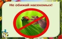 насекомые-наши друзья
